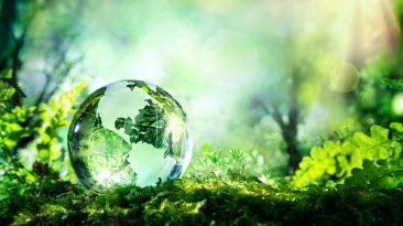 Sehnsucht der Erde